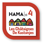 hama-4-2